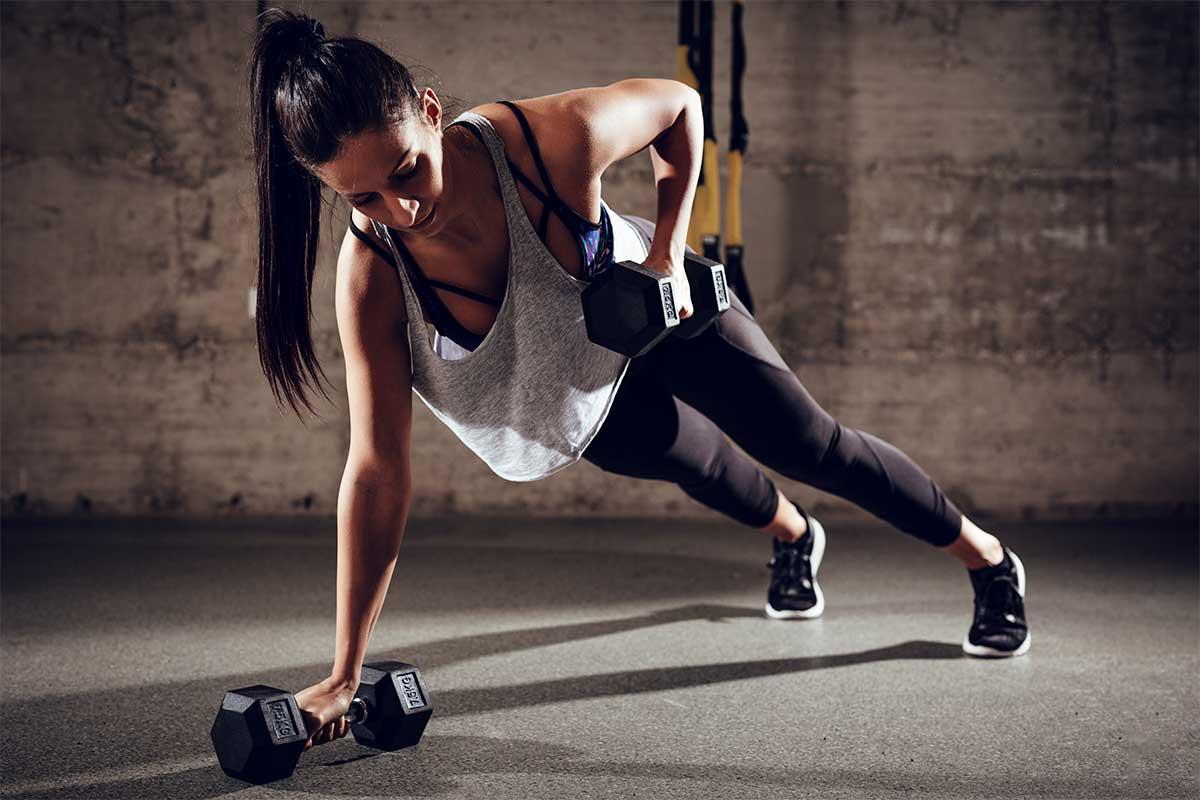 Conoce tus grupos musculares